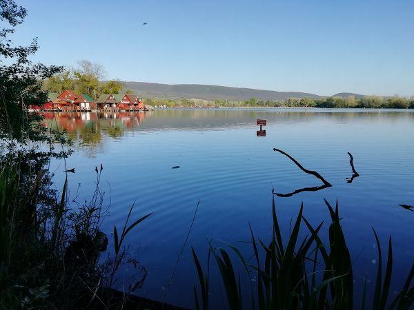Derítő tó