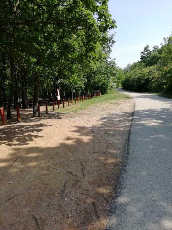 kerekparut-az-arboretumnal
